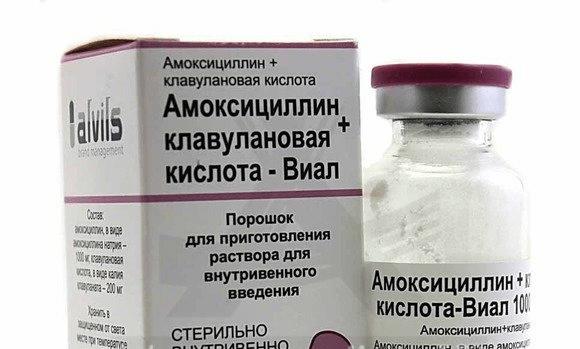 амоксициллин клавулановая кислота мазь