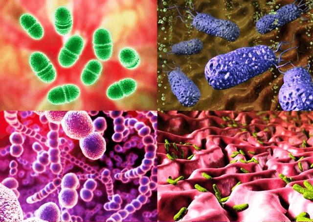 Гипертрофия аденоидов у детей